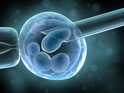 胚胎植入前遗传学检测(PGT)